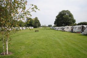 Burrows Park Dog Friendly Campsite Great Ouseburn | Yorkshire